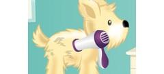 портал игр- ухаживание за животными на сайте