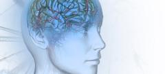 Игры Для развития мозга Для айпада онлайн