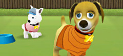 игры собаки одевалки