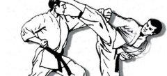 Карате драки - поиграть