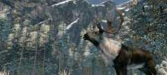 Охота и рыбалка на лучшем игровом портале