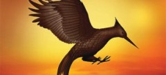 лучшие игры с птицами online