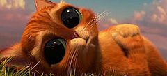 играй по интернету в игры про Кота в сапогах