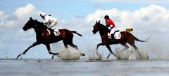 самые новые Скачки на лошадях
