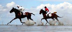 все online Скачки на лошадях