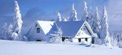 флеш - игры Зима