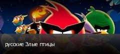 русские Злые птицы