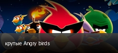 крутые Angry birds