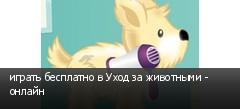 играть бесплатно в Уход за животными - онлайн