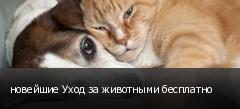 новейшие Уход за животными бесплатно
