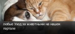 любые Уход за животными на нашем портале