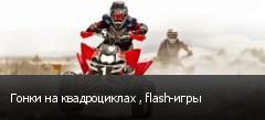 Гонки на квадроциклах , flash-игры