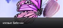 клевые Бабочки