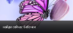 найди сейчас Бабочки