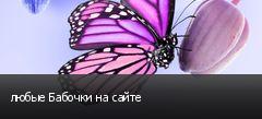 любые Бабочки на сайте