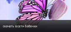 скачать в сети Бабочки