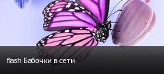 flash Бабочки в сети
