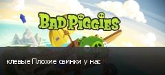 клевые Плохие свинки у нас