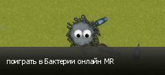 поиграть в Бактерии онлайн MR