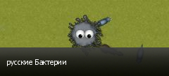 русские Бактерии