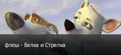 флеш - Белка и Стрелка
