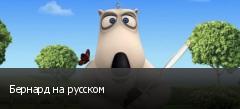 Бернард на русском