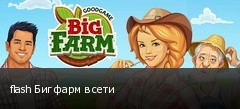 flash Биг фарм в сети
