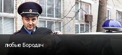 любые Бородач