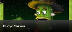 Кактус Маккой