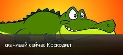скачивай сейчас Крокодил