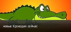 новые Крокодил сейчас