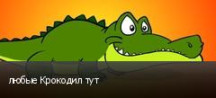 любые Крокодил тут
