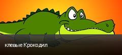 клевые Крокодил