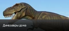 Динозавры дома