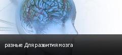 разные Для развития мозга