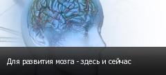 Для развития мозга - здесь и сейчас