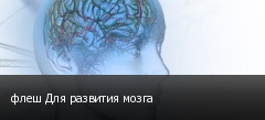 флеш Для развития мозга