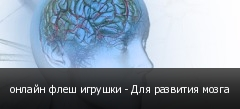 онлайн флеш игрушки - Для развития мозга