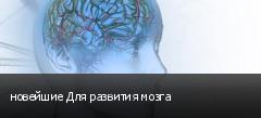 новейшие Для развития мозга