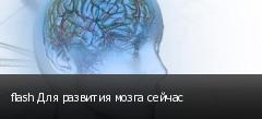 flash Для развития мозга сейчас