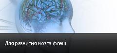 Для развития мозга флеш