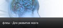 флеш - Для развития мозга