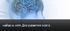 найди в сети Для развития мозга