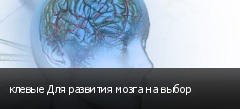 клевые Для развития мозга на выбор