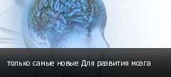 только самые новые Для развития мозга