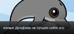клевые Дельфины на лучшем сайте игр