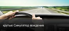 крутые Симулятор вождения