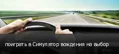 поиграть в Симулятор вождения на выбор