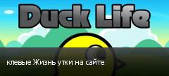 клевые Жизнь утки на сайте
