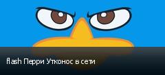 flash Перри Утконос в сети